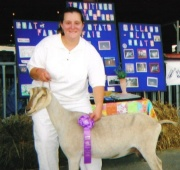 Vanessa Wallace, a WVU sophomore studying animal and veterinary science, was recently named American Dairy Goat Association Youth Representative.  Here, she poses with her goat, Penny, at the 2006 West Virginia State Fair.