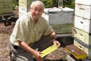 Davis College Professor James Amrine attaches a pollen trap to one of the 20 beehives WVU uses for research. Amrine\'s research, which may help reverse the international problem of the honeybees\' declining populations, will be published in the