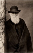 "WVU is celebrating the 200th birthday of Charles Darwin with DarwinFest, a series of talks and presentations examining the naturalist's work -- from his travels to his influential theory on evolution. ""Darwin: Evolutionary Science and Its Impact"