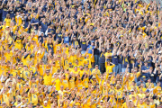 Mountaineer pride