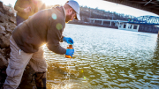 WVU researchers collected samples following the Jan. 9, 2014, chemical spill into the Elk River near Charleston, W.Va.